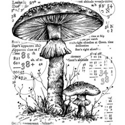 Crafty individuals Unmounted rubber stempel Counting Toadstools CI-574